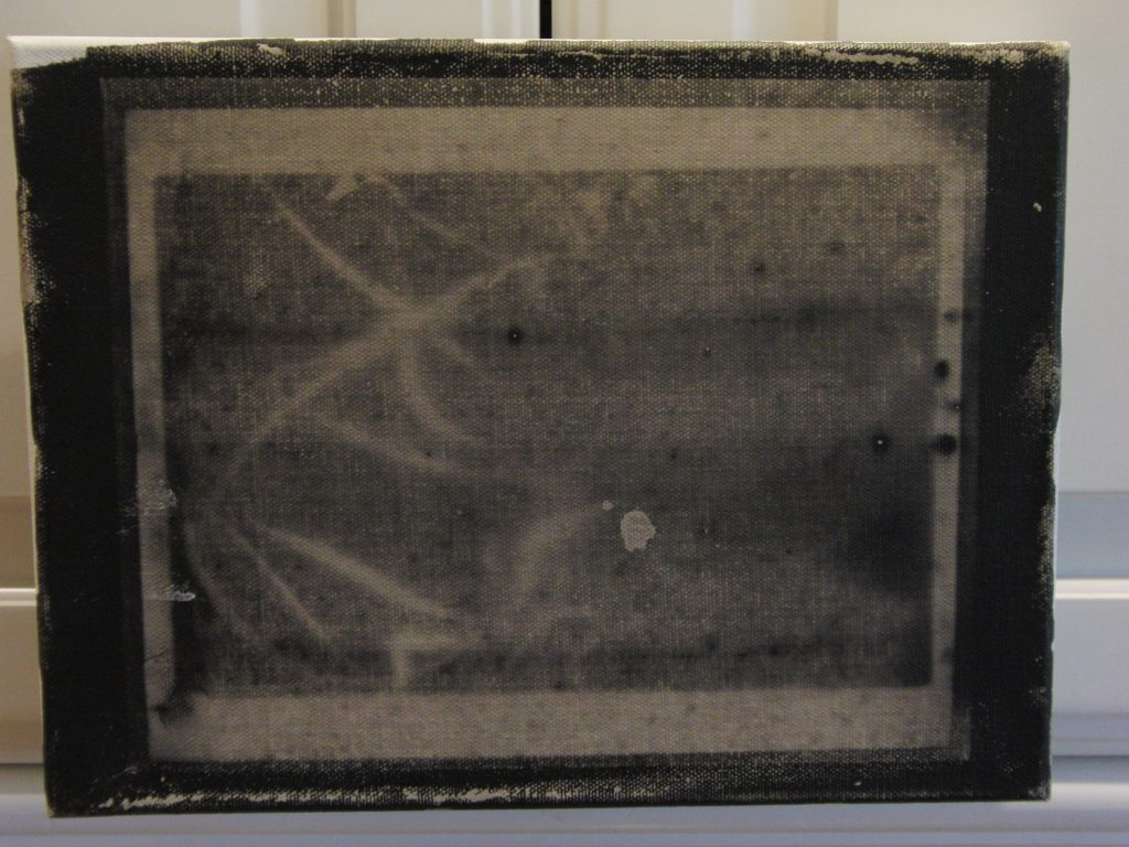 Nitrate Photo Emulsions